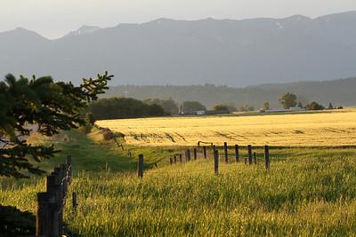 Farms of Flathead County MT