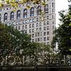 Flatiron Building and the Shake Shack