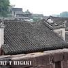 fenghuang-10