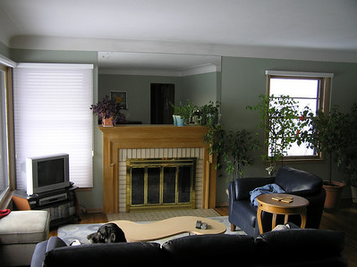 2008 Fireplace Remodel