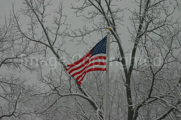 Old Glory during Snow
