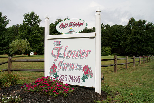 Flower Farm Aug 2012