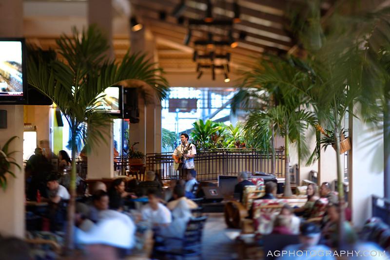 MTB-Waikiki-06