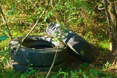 Abandoned tires left laying in the field.