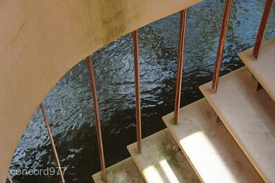 12 - Frank Lloyd Wright - Fallingwater - 5/1/2010