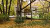 Dr. Edith Farnsworth House, East Facade<br /> Ludwig Mies van der Rohe, 1951<br /> Plano, Illinois