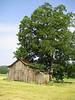 Clayton barn.