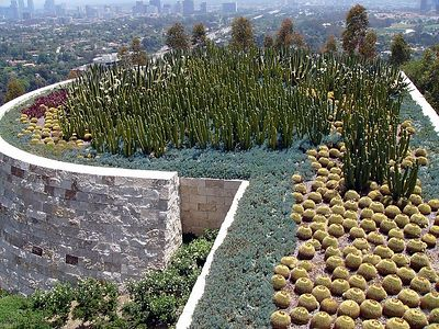 South Promontory Cactus Garden  On a clear day (not this day) the perfect birds-eye view of Los Angeles, from Downtown to the Pacific. Vertical cactus intended to reflect skyscrapers in distance.