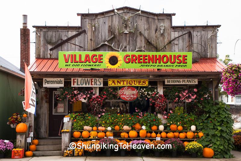 Village Greenhouse, Gays Mills, Wisconsin