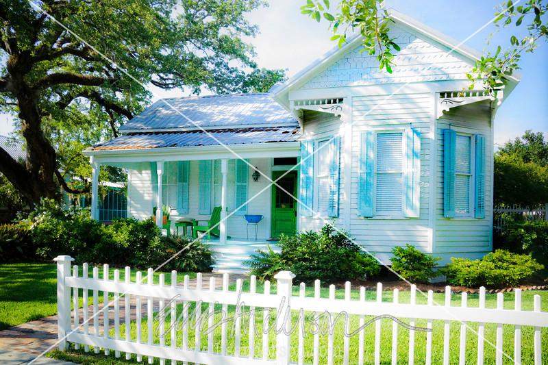 House on Carroll street 8953