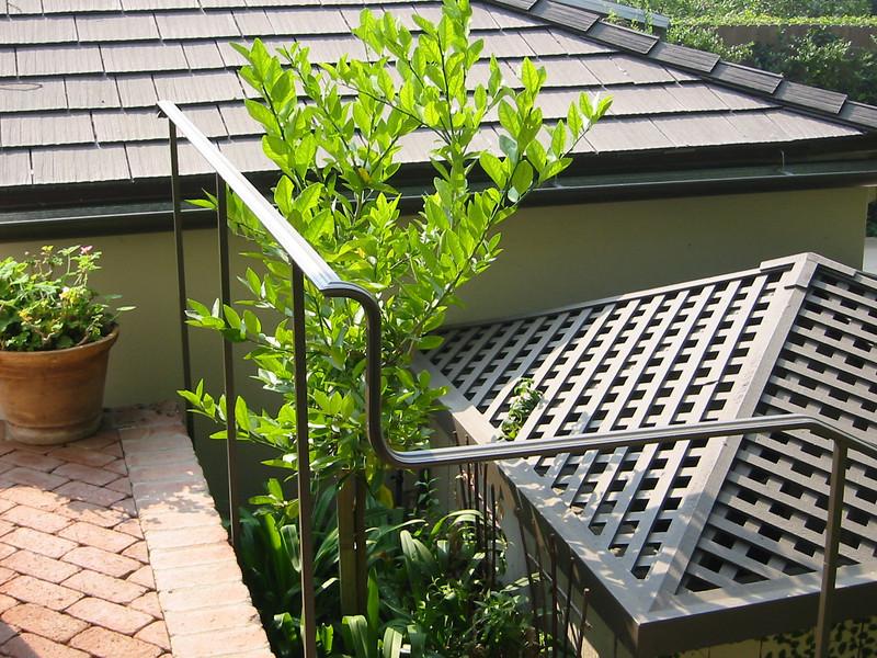 Handrail detail - White residence, Pasadena, CA