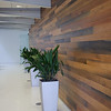 002 Wood Accent Wall