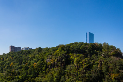 Fort Lee Forest & High Rise's