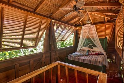 Casa Canopy