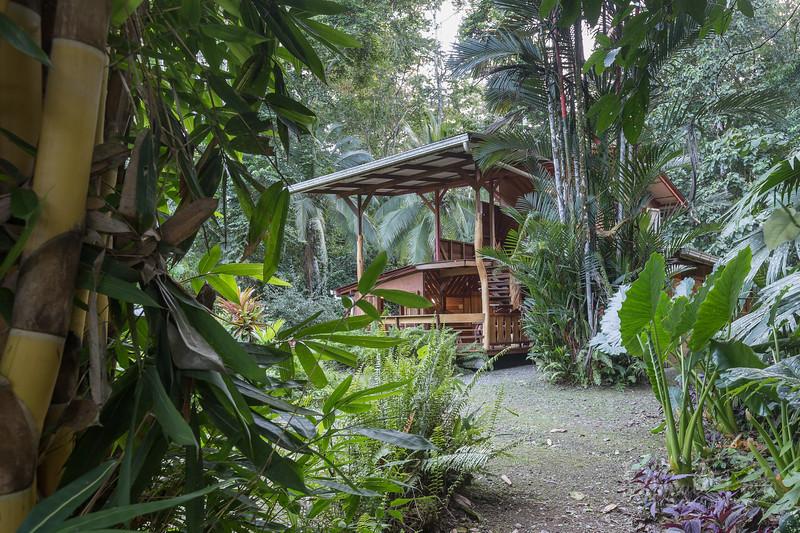 Casa Mambo