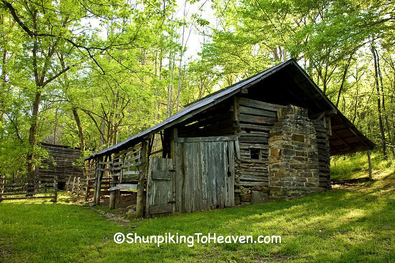 Beaver Jim Villines Boyhood Home, Newton County, Arkansas