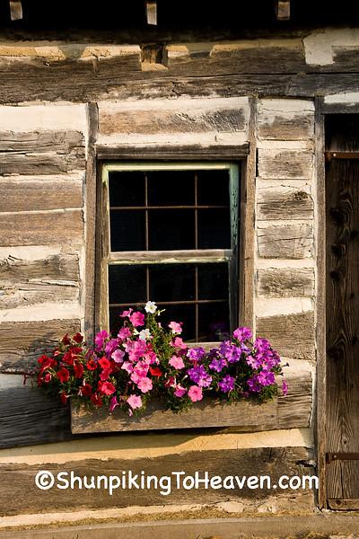 Log Cabin Window and Petunias, Clayton County, Iowa