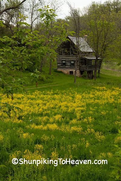 Log Cabin, Iowa County, Wisconsin