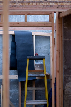 ladder1275
