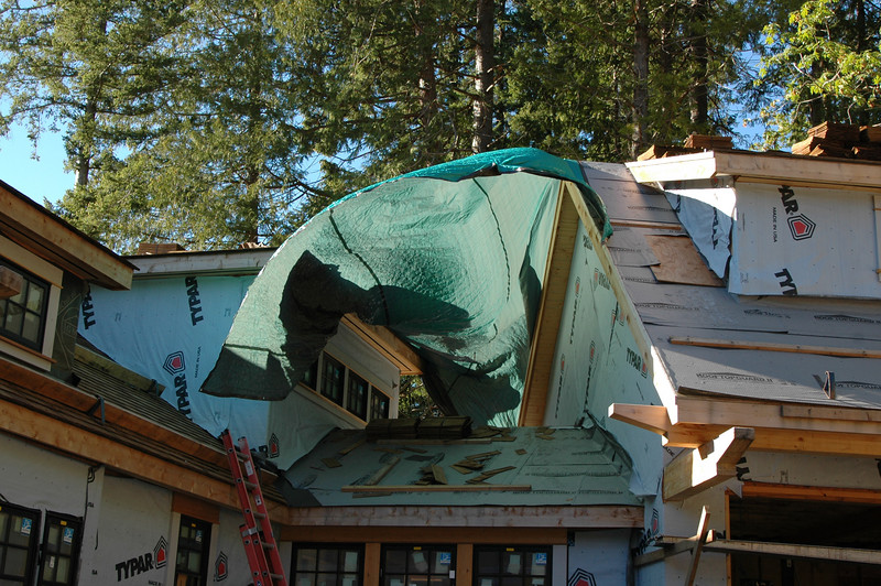 The bluegreen tarp is flying over the mudroom which is the space between the house and the garaged.  It is protecting the inside of the house until the roof is finished. Remember we have moved to a rainy climate!