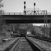 A portrait of a Norfolk Southern train in the River Arts District in Asheville NC.