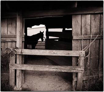 Coester Barn  09 22 12  045