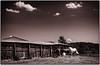 Horse Barn  07 02 12  014-2