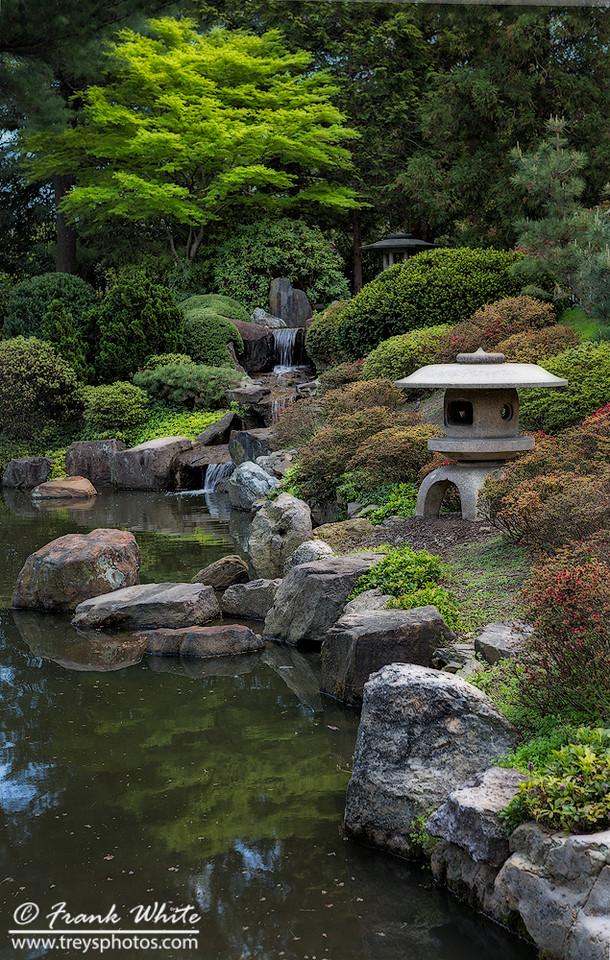 Zen garden #3