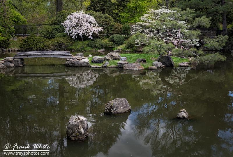 Zen garden #5