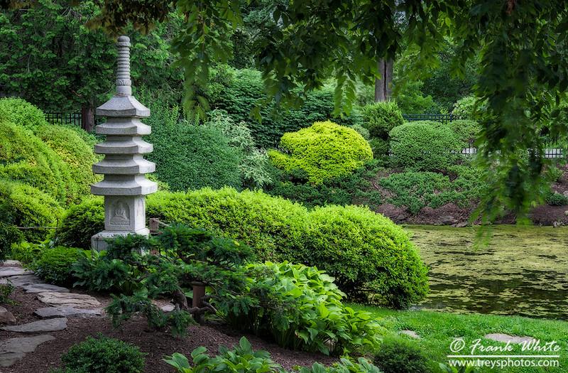Zen garden #4
