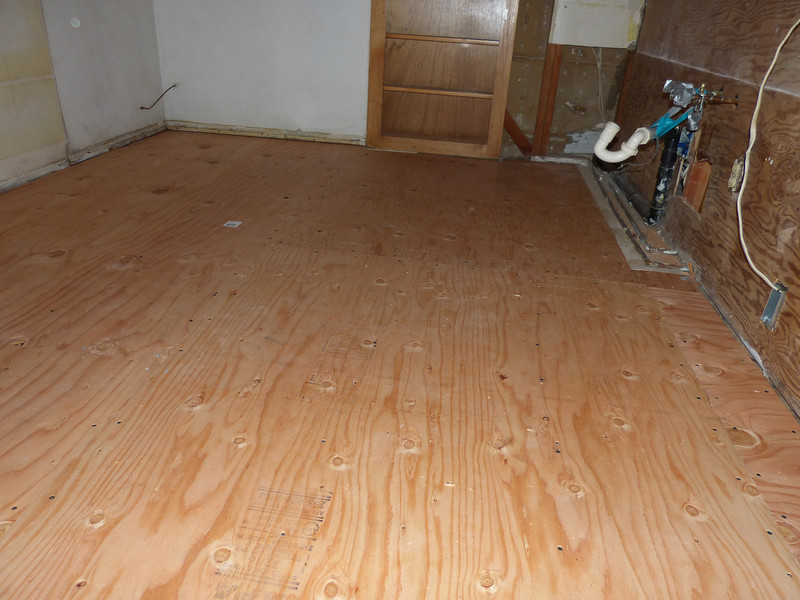new subfloor!  No more critters peering up at me though the rib bones of the house.