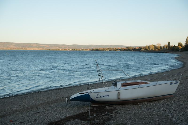 Shoreline along the Danube