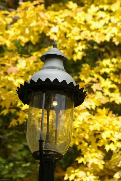 Gaslight on Yellow