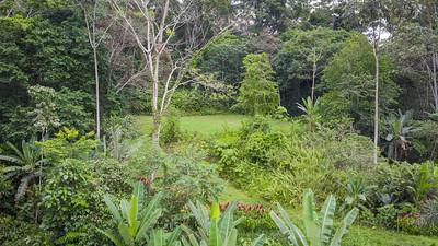 Bio Caribe