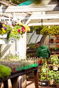 Langs_Garden-25