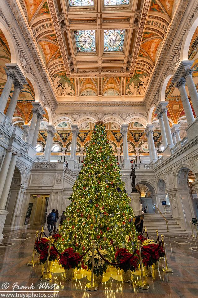 Christmas tree, main lobby, Library of Congress