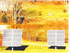 Photovoltaic sun tracking panels for the 12v. electrical system. (House also has standard electrical system.)
