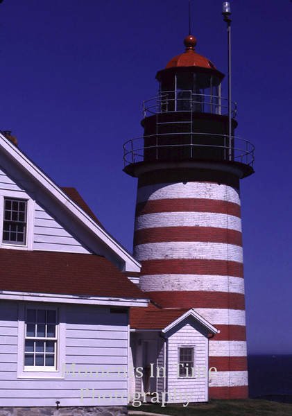 West Quoddy detail
