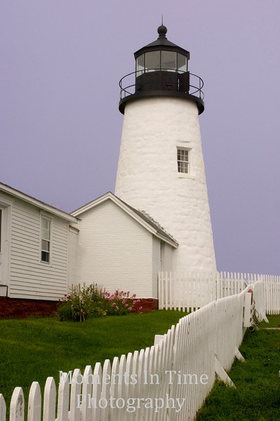 Pemaquid with fence