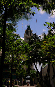 Aloha Tower in Honolulu Harbor seen through the trees on the lining Fort Street Mall