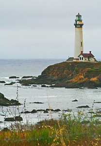 Pigeon Point Lighthouse ~ 50 miles south of San Francisco, near the small town of Pescadero, this lighthouse has been warning mariners since 1872.  The tower is 115 feet high, one of the tallest lighthouses on the West Coast.  The fog muted the colors of this beautiful spot.