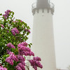Lilacs and Lighthouse