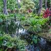 DSC_7798-lili gardens