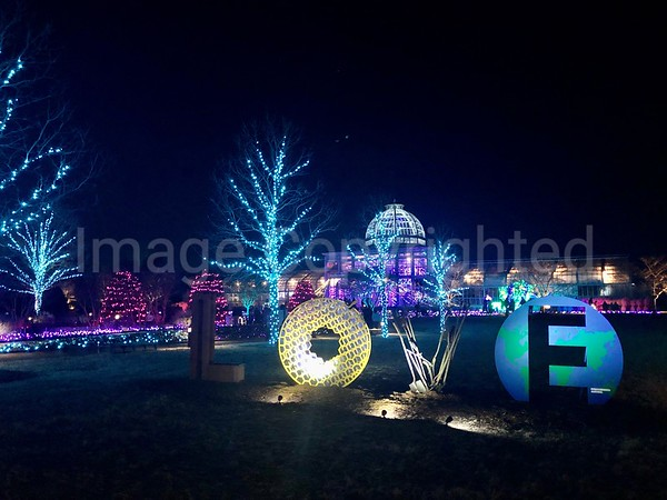 Holiday - Lewis Ginter - Richmond