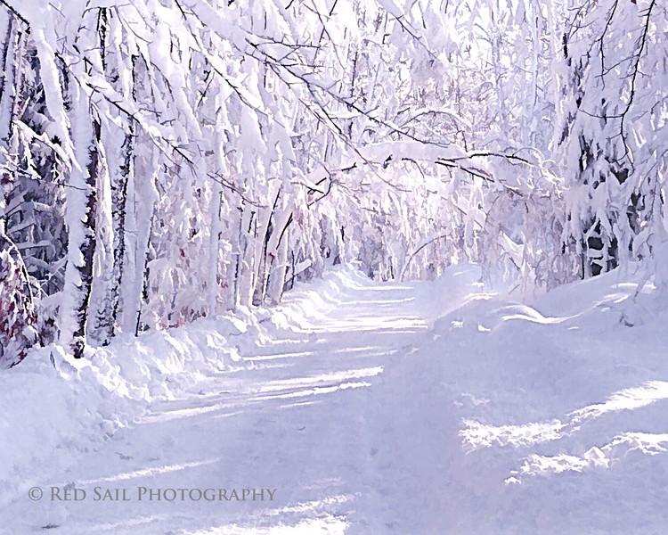 Winter road..