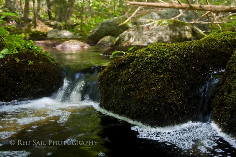 Parks Pond Stream.