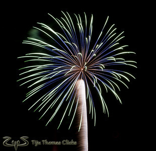 Palm Tree - Fireworks / Prineville / Oregon  Took this picture during the 4th of July celebrations. Never expected to shoot fireworks on that day. But luckily saw few crackers in the sky while I was driving. Quickly stopped by the side of the road to click some snaps. I liked this shot as it came out in the shape of a Palm tree