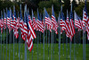 Flags at Veterans Memorial Park, Richland Center, Wisconsin