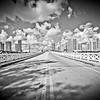 Venetian Causeway