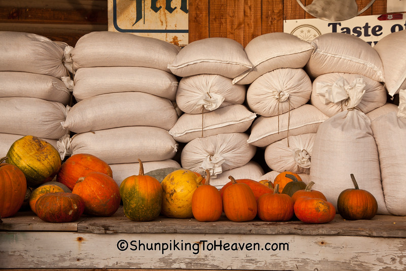 Feed Bags and Pumpkins at Old Feed Mill, Ashland County, Wisconsin